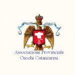 logo-apccz2