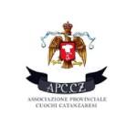 Logo APCCz13